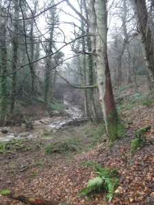Nant Bridge, Bersham Woods - a lovely place for a spring sketching day?
