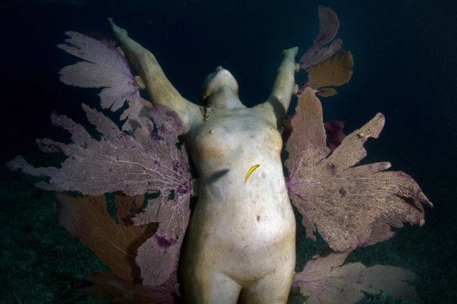 57-overview-reclamation-mexico-jason-decaires-taylor-sculpture