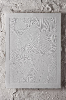 Image 2, Brain Coral detail, blind embossing, © Jacqui Dodds