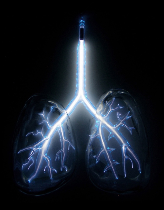 ElectricLungsWeb