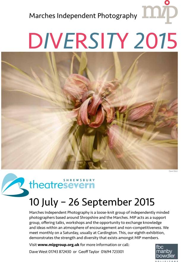 MIP leaflet 15 2015
